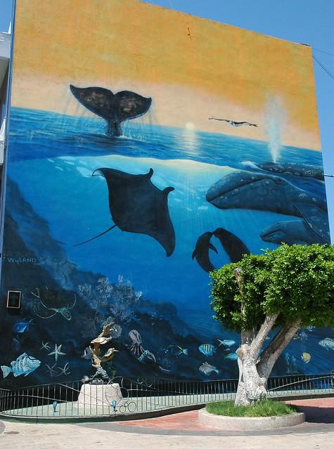 Blue ocean mural building in la paz manta ray dolphins - Lecteur blue ray mural ...