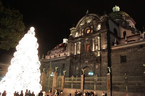 Catedral y árbol luminoso
