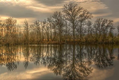 park reflection landscape nc pond scenic hdr greenvillenc tonemap riverparknorth jaygetsinger