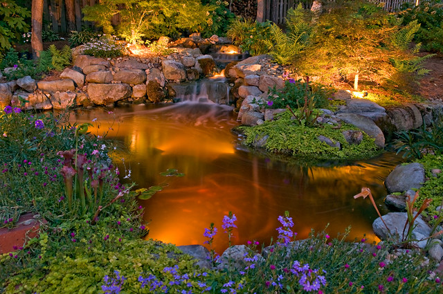 Pond And Waterfall Lights Near Garden Flickr Photo Sharing