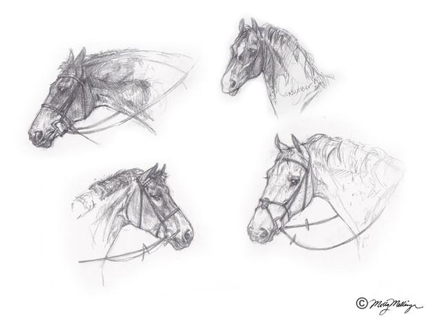Hunter Horses Sketch