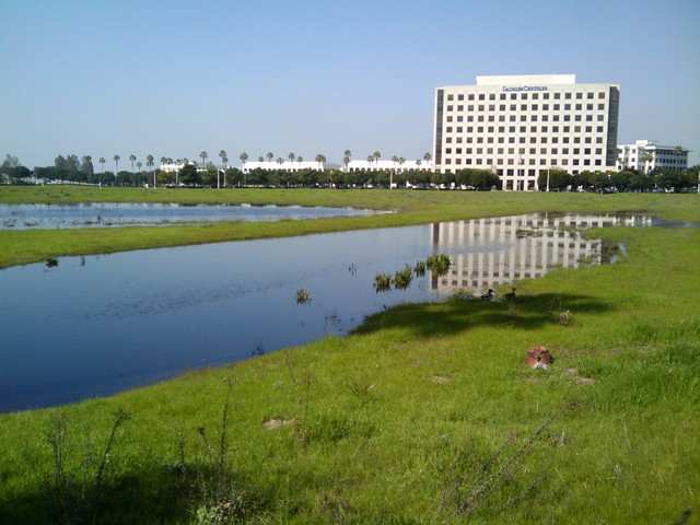 Office Park Ponds (2/3)