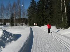 Ruotasjärvi