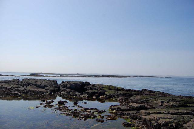 Las islas de Farne. Northumberland, Inglaterra