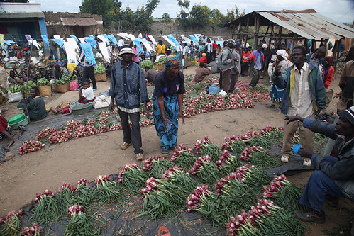 Market near Khulungira Village, in central Malawi