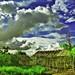 Landscape by Hary Muhammad