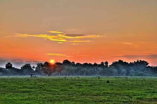 morning field grass fog clouds sunrise nikon florida farm pasture spanishmoss hdr highdynamicrange d300 grazingland photomatix manateecounty jonathansabin