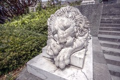 Спящий лев из Воронцовского дворца