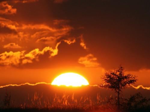 sunset unitedstates florida 34 floridaeverglades autumnsunset sunsetwednesday hometownsunset coralspringsflorida wednesdaysunset quartasunset quartasunsetgroup littletree~quartasunset34