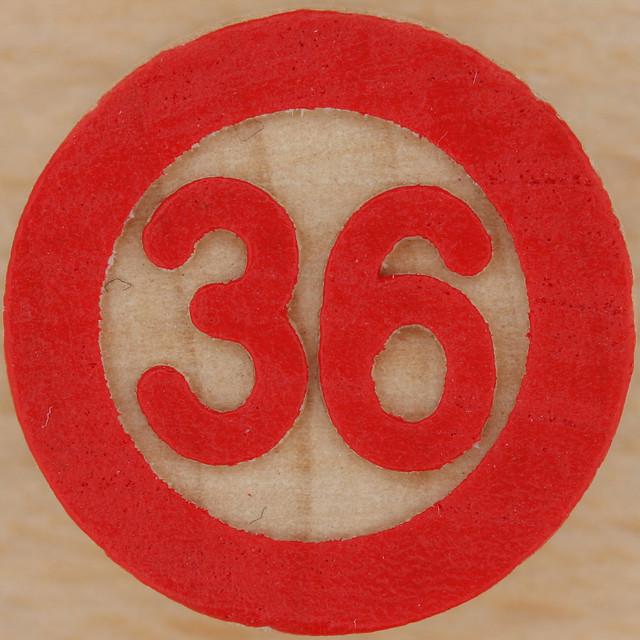 Bingo Number 36