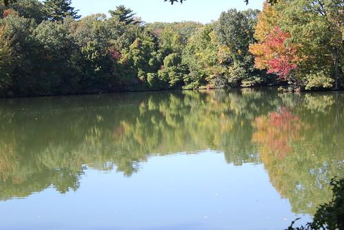 autumn providence rhodeisland rogerwilliamspark elmlake