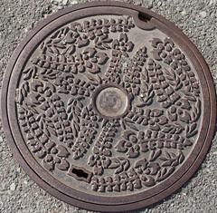 Japan2010-41-021