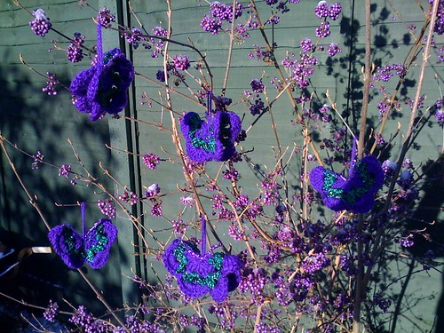 Butterflies on the Calicarpa Bush in the Garden.