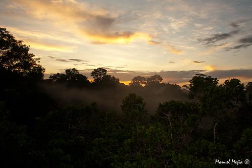 sunset landscape yasuni manuelmejia