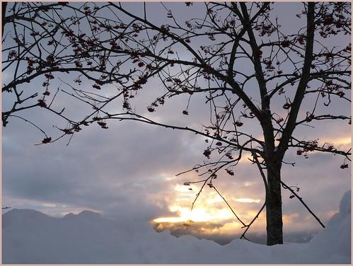 winter solitude by parol