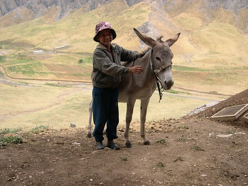 Boy and Donkey in Uzbekistan