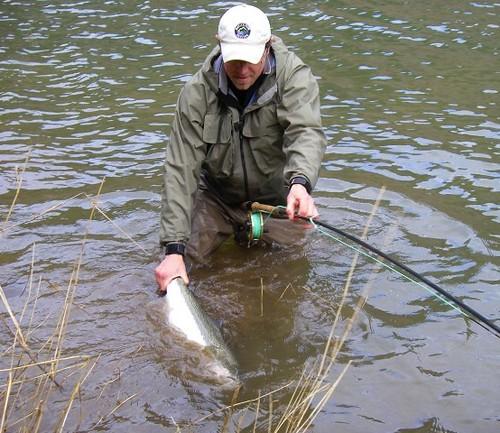 Oregon winter steelhead fishing in full swing the caddis for Winter steelhead fishing