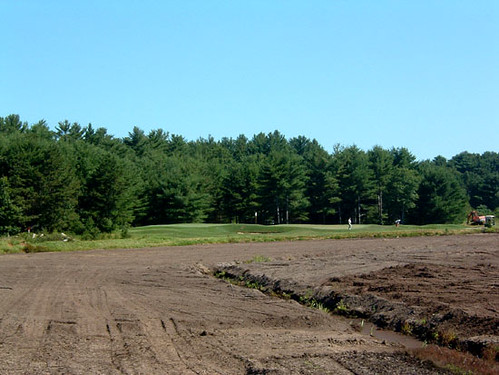 Cranberry Bog Renovation