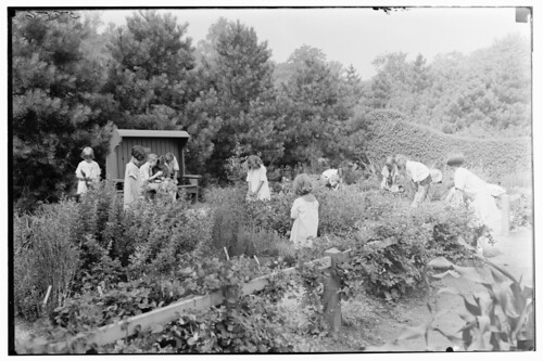 Shakespeare Garden 1926