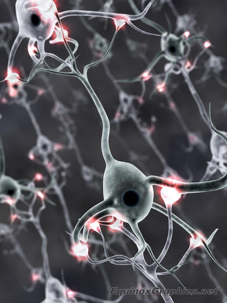 Image:Firing Neural Network