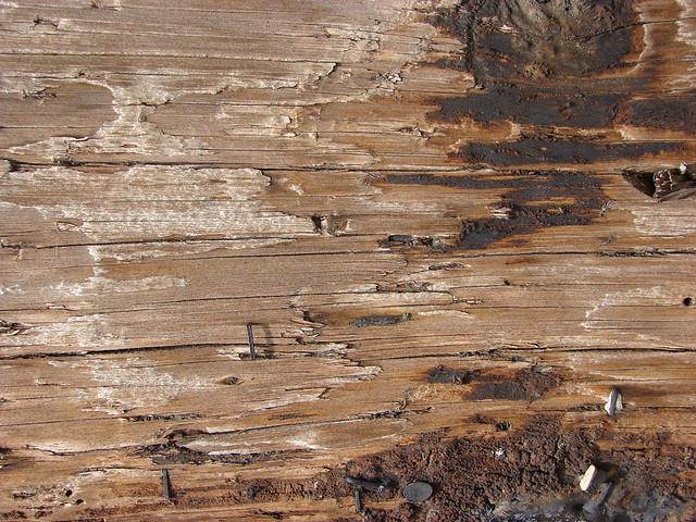 Weathered Wood 5 Flickr Photo Sharing
