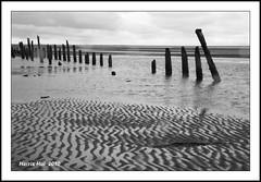 Iona Beach Richmond