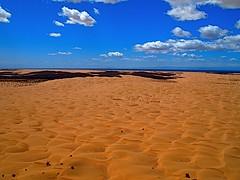 sea(0.0), formation(0.0), plateau(0.0), wadi(0.0), erg(1.0), horizon(1.0), sand(1.0), aeolian landform(1.0), natural environment(1.0), desert(1.0), dune(1.0), landscape(1.0), sahara(1.0),