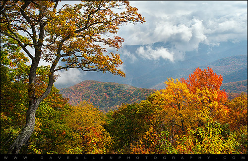 blue autumn autumnfoliage trees red orange mountains fall leaves yellow fog clouds landscape photography nc nikon colorful fallcolors rich northcarolina fallfoliage foliage ridge parkway blueridgemountains blueridgeparkway daveallen wnc westernnorthcarolina d700 mygearandme