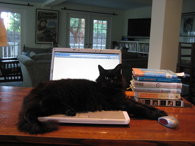 Patsy says, no blogging.