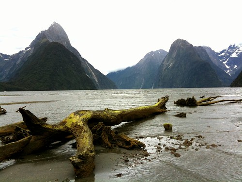 Photo of Milford Sound by TRAILSOURCE.COM