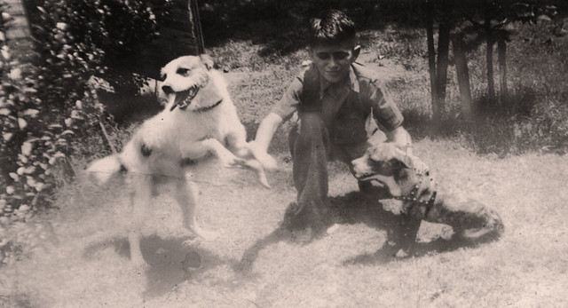 1941 Thel & dogs | A boy and his dogs  Most of these photos