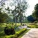 Small photo of Path To Children's Area, Ambedkar Park