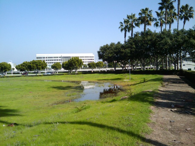 Office Park Ponds (1/3)