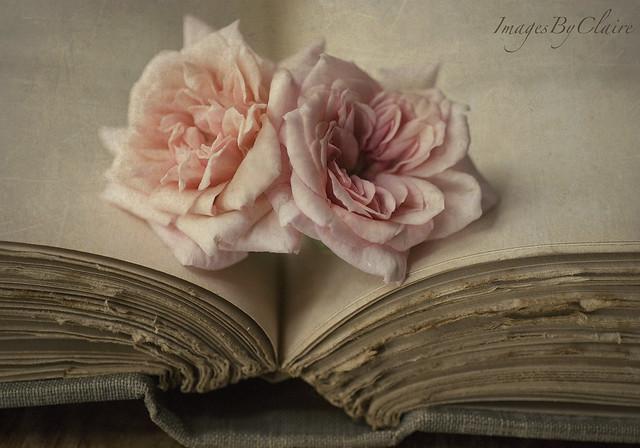 Shakespeare & roses...