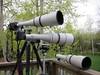 FD 800mm 5.6 L, FD 600mm 4.5 by Ontarian