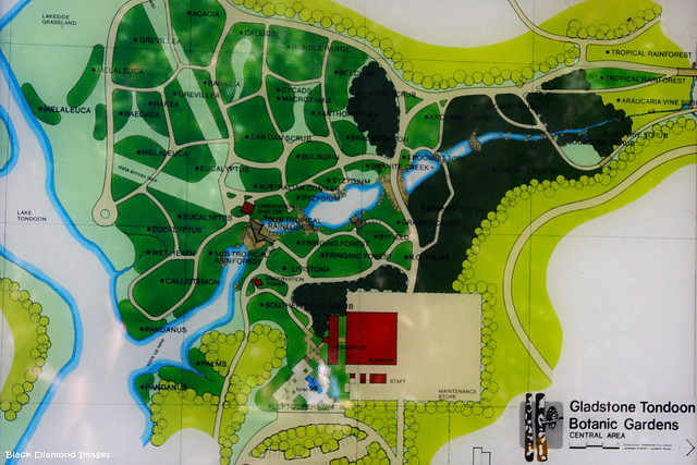Tondoon Botanic Gardens - Gladstone, Map 2