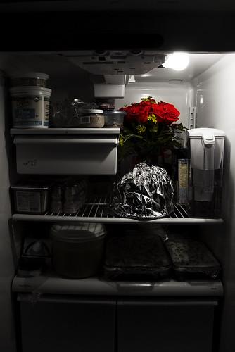 Day 109: Fridge Flowers