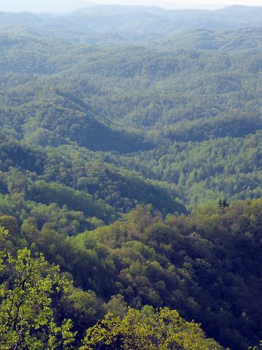 mountain mountains green landscape spring northcarolina april landschaft blueridgemountains blueridgeparkway appalachianmountains appalachians westernnorthcarolina southernappalachians ccbyncsa grandviewoverlook canonpowershotsx10is
