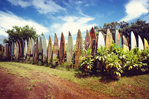 Happy Fence Friday: Hang Ten Edition!
