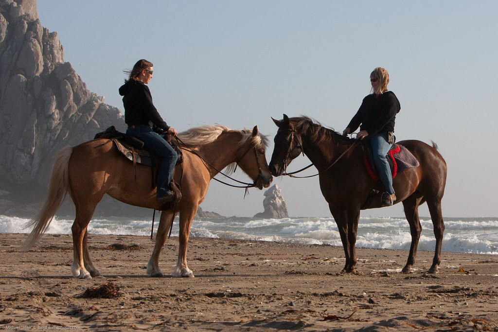True friends! Nose to nose at Pillar Rock and Morro Rock. L-R Susanne Nuckols and Lynda Roeller - Roeller Nuckols Equestrians Morro Strand 08 June 2010 - Roeller Nuckols Equestrians Morro Strand 08 June 2010