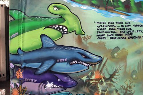 sharks_cu_sm