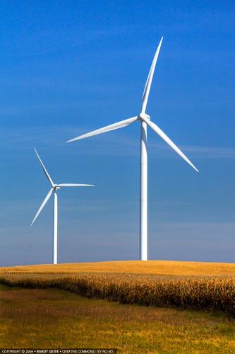 morning portrait fall field rural corn energy unitedstates wind bluesky alternativeenergy electricity hadley mn windturbine windpower frontview turbines windturbines