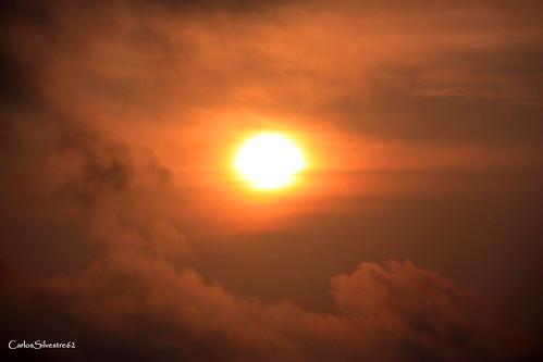 sunprincess carlossilvestre62