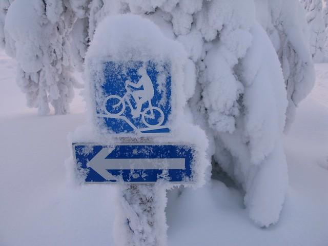Justo antes de la frontera con Laponia
