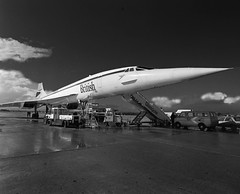 airline, aviation, airliner, airplane, wing, vehicle, monochrome photography, supersonic aircraft, concorde, monochrome, black-and-white, supersonic transport, tarmac, jet aircraft,
