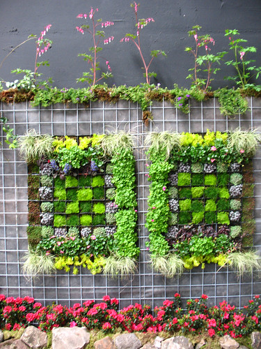 Vertical Garden, by The Blue Girl, on Flickr