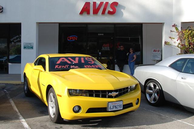 One Way Car Rentals - Cheap Car Rentals with Avis Car Rentals