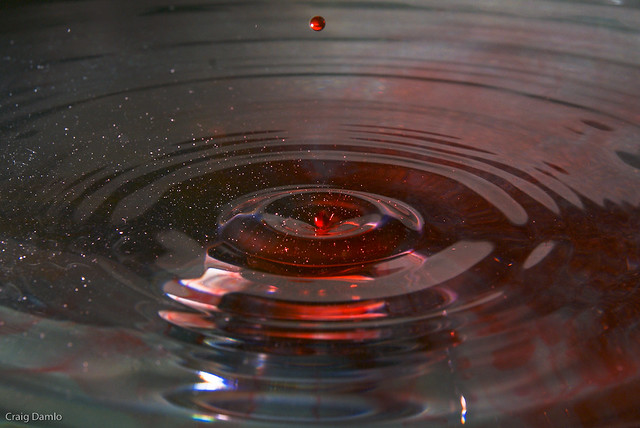 Blood And Water Flickr Photo Sharing