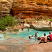 A swim at Havasu Creek | 180° Panorama