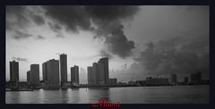 Miami Fla.